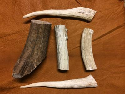 pieces of hard elk antler